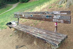 A bench located in the park next to Cobain's Seattle home